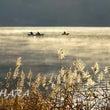 晩秋の木崎湖