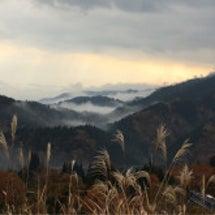 九頭竜川沿いの景色