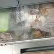 冷凍庫の片付けと掃除