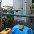 堆肥置き場の修理