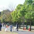 北総花の丘公園☆ワン…