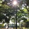 12月から新宿御苑前にて講座、セッション、お受けいただけます。の画像