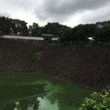 城を観る《江戸城(皇…