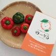 ◆地元朝どれ野菜のお…