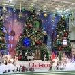 名古屋駅のクリスマス…