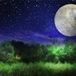 月のリズムで生きる