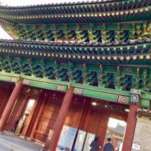 昌慶宮にも行ってきま…