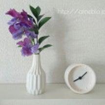 【Bloomee L…