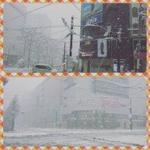 わや~大雪だぁ~