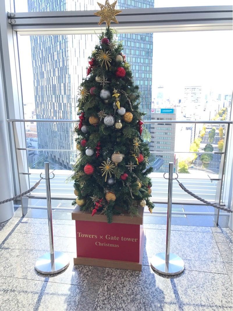 腎臓病向け クリスマスのチキン料理