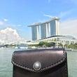シンガポールで活躍す…
