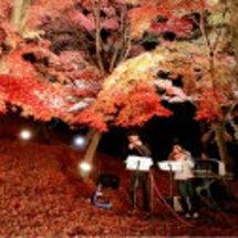 秋の宍粟へ ①