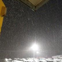 雪が降ったぞー( ̄□…