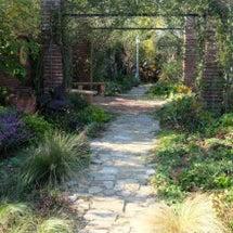 ビズ大賞のお庭への訪…