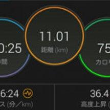 横浜月例20K 富士…