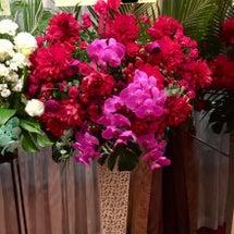スカピン大阪公演