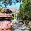 箱根観光の楽しみの一…
