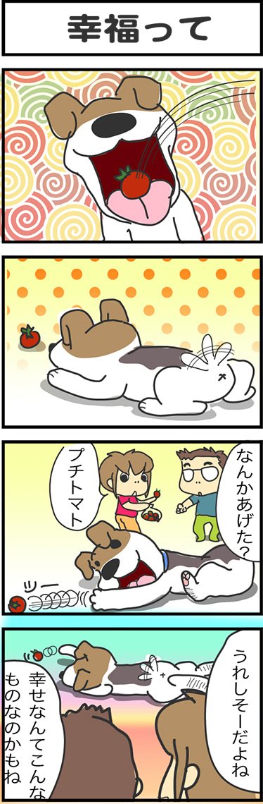 illust781