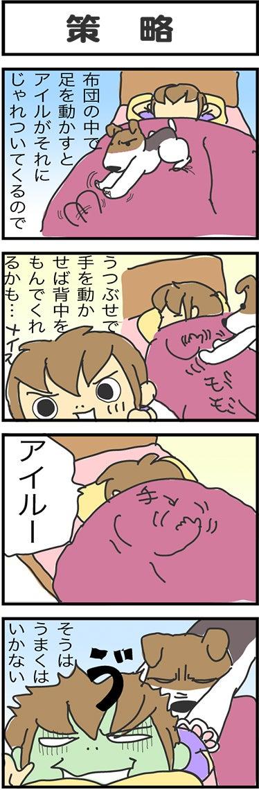 illust777