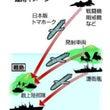 日本版巡航ミサイル