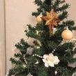 今年のクリスマスツリ…