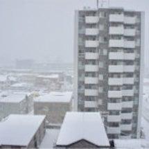 雪の中の学芸会&トリ…