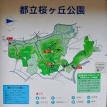 都立桜ヶ丘公園へ♪