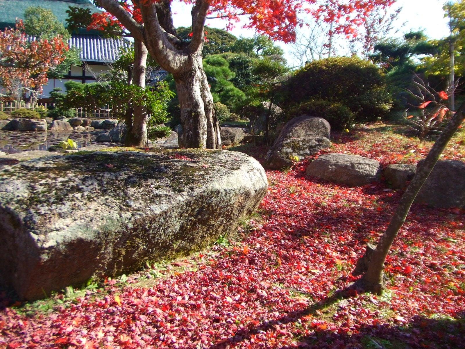 仏心寺の散策