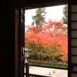 そうだ、京都に行こう