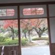 嵐山の紅葉と渡月橋