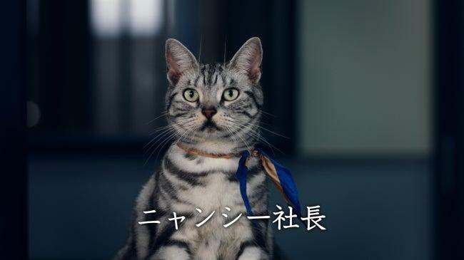 ゆりやんさんの英語 | 目からうろこの英語学習!聴ける、伝わる!を ...