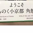 秋田旅行*角館さんぽ