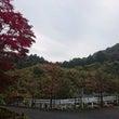 厚木の「七沢観音寺」…