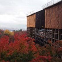 京都・清水寺の紅葉