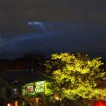 京都・高台寺の紅葉の…