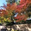【華結び】京都の前撮…