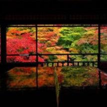京都紅葉、瑠璃光院