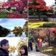 金沢ツイン旅。日本武…