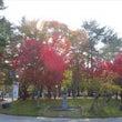 紅葉~奈良県文化会館…