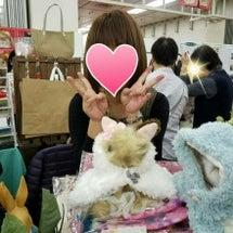 うさフェス2017秋…
