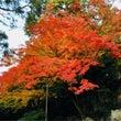 京都の紅葉2017