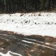 雪じゃ❗️