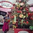 クリスマスツリー点灯…