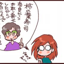 日本の風流 限定柿の…