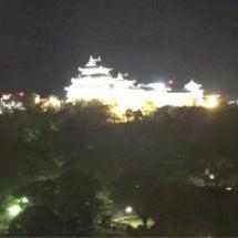 夜の和歌山城を望む
