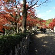 嵯峨野、平安郷の紅葉
