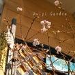 十月桜&花持ちの良い…