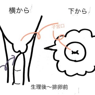 福さん式 まとめ *画像付き 追記ありの記事に添付されている画像