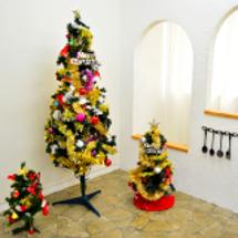 クリスマス撮影。