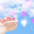 12/3今年最後の天…